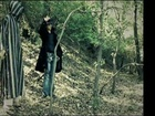 Ancestral Earth - perdu dans la forêt
